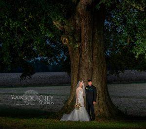 Maryland Wedding Tree - Your Journey Studios